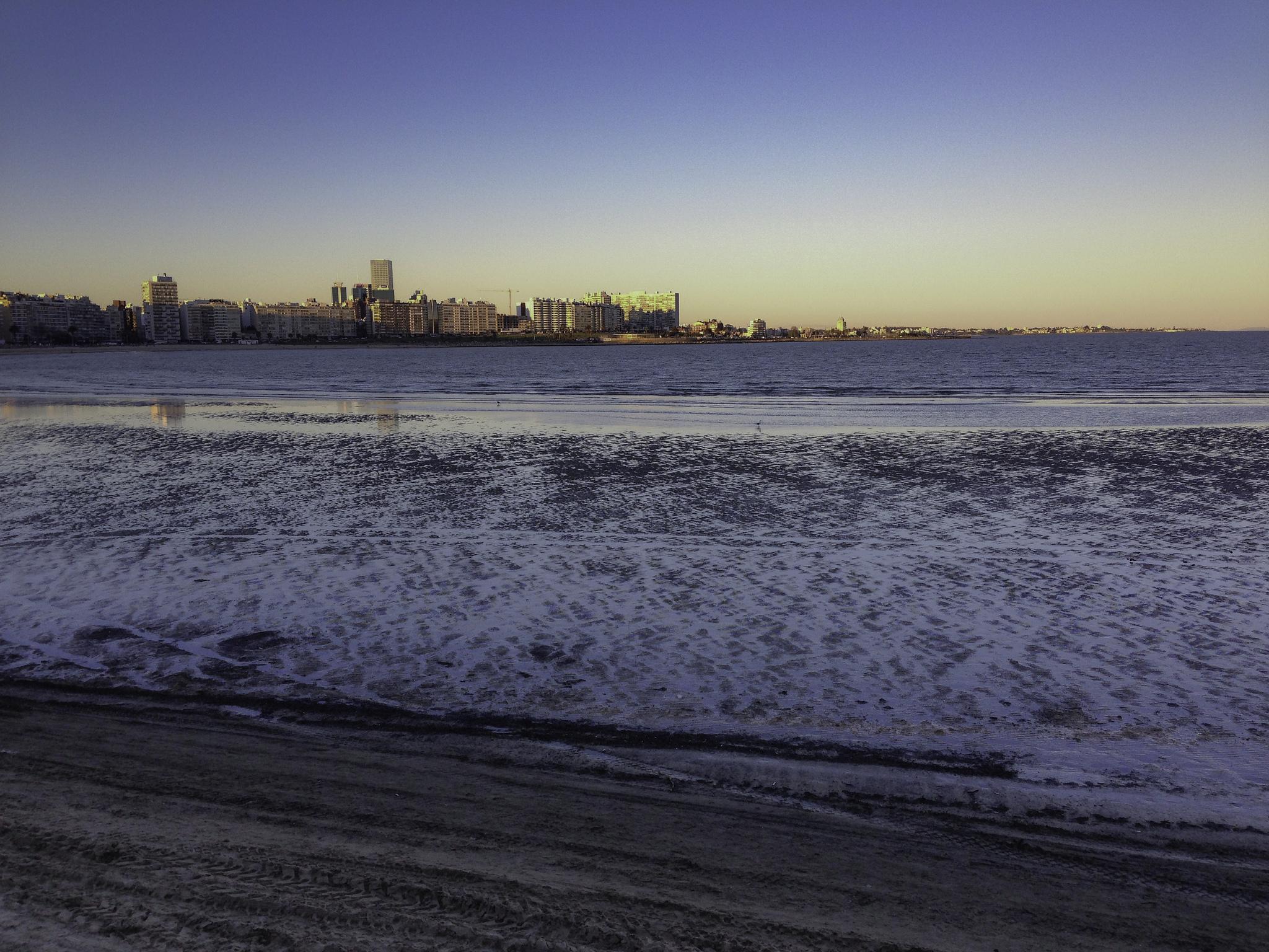 Playas de Montevideo