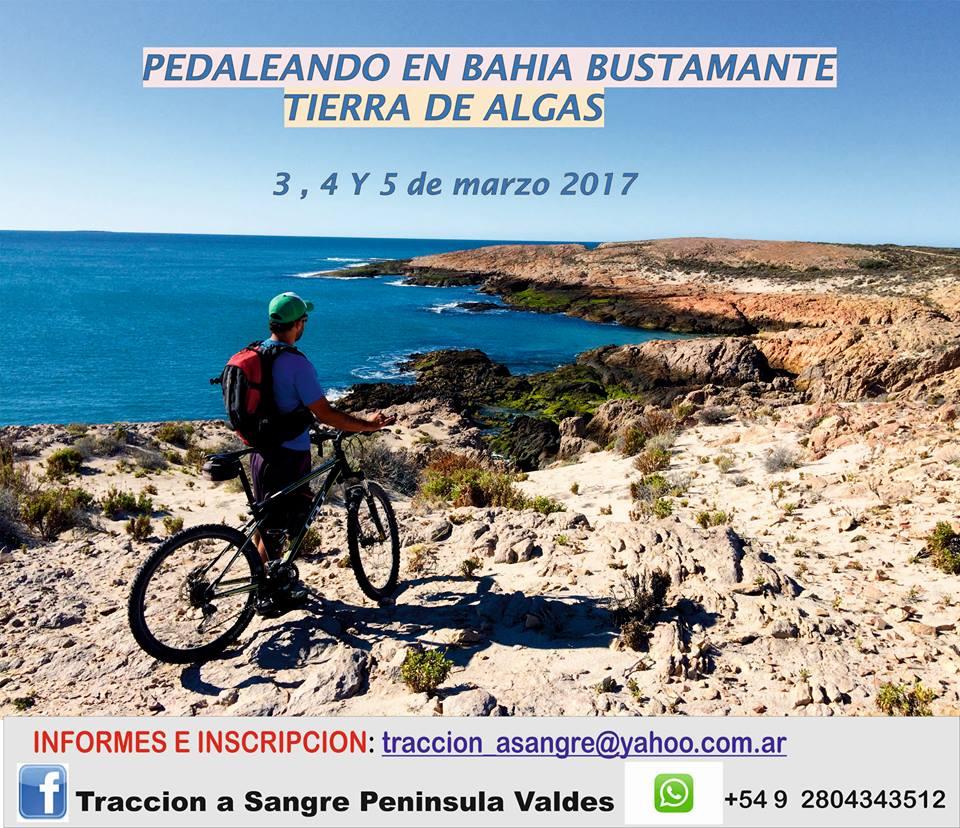 Puerto Madryn: Playa, windsurf y rock en verano