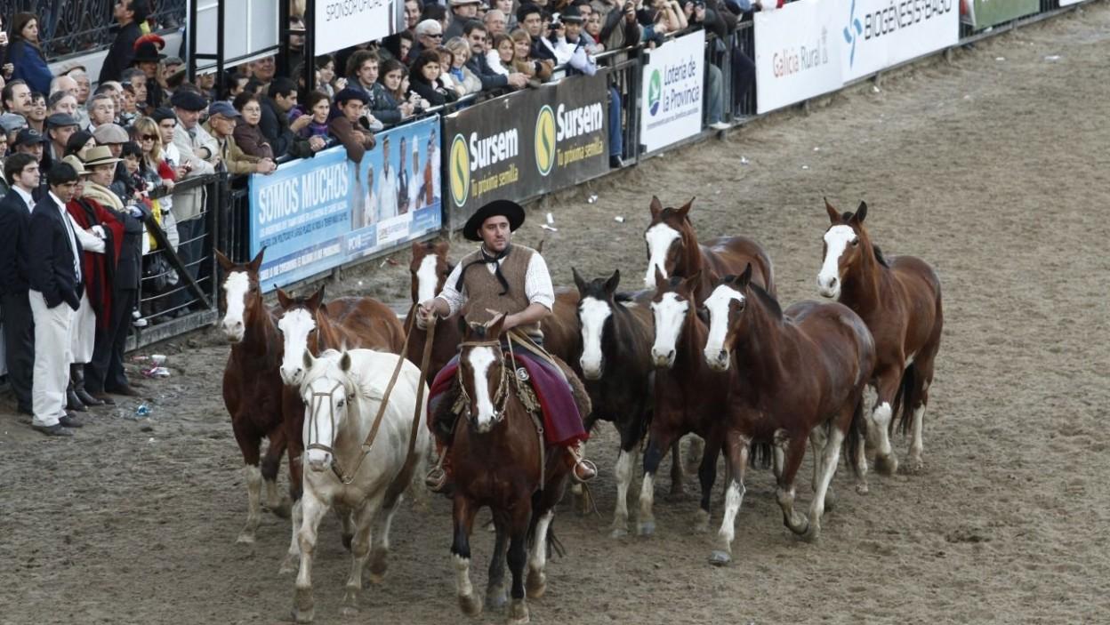 Crédito de la foto: http://www.larural.com.ar/exposiciones-y-eventos/exposicion-rural-17