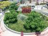 Distrito Arcos in Palermo: Outdoor Premium Outlet